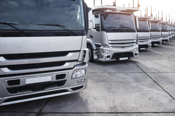 Group of trucks parked in a row.